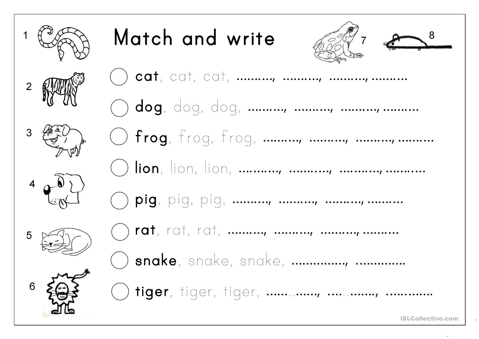 Matching, Letter Tracing, Writing - Animals - English Esl in Tracing Writing Letters Worksheet