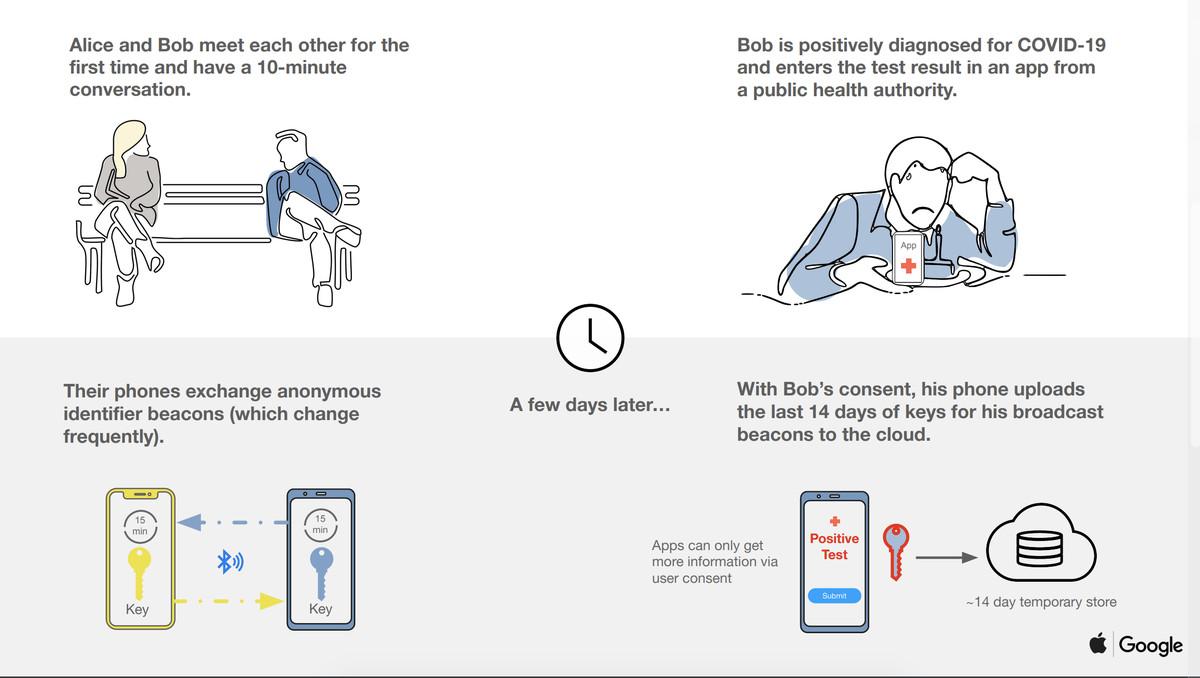 Google And Apple Launching Coronavirus Contact-Tracing