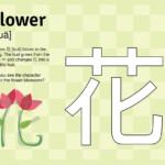 "Learn ""flower"" In Mandarin | Learn Chinese, Printable"