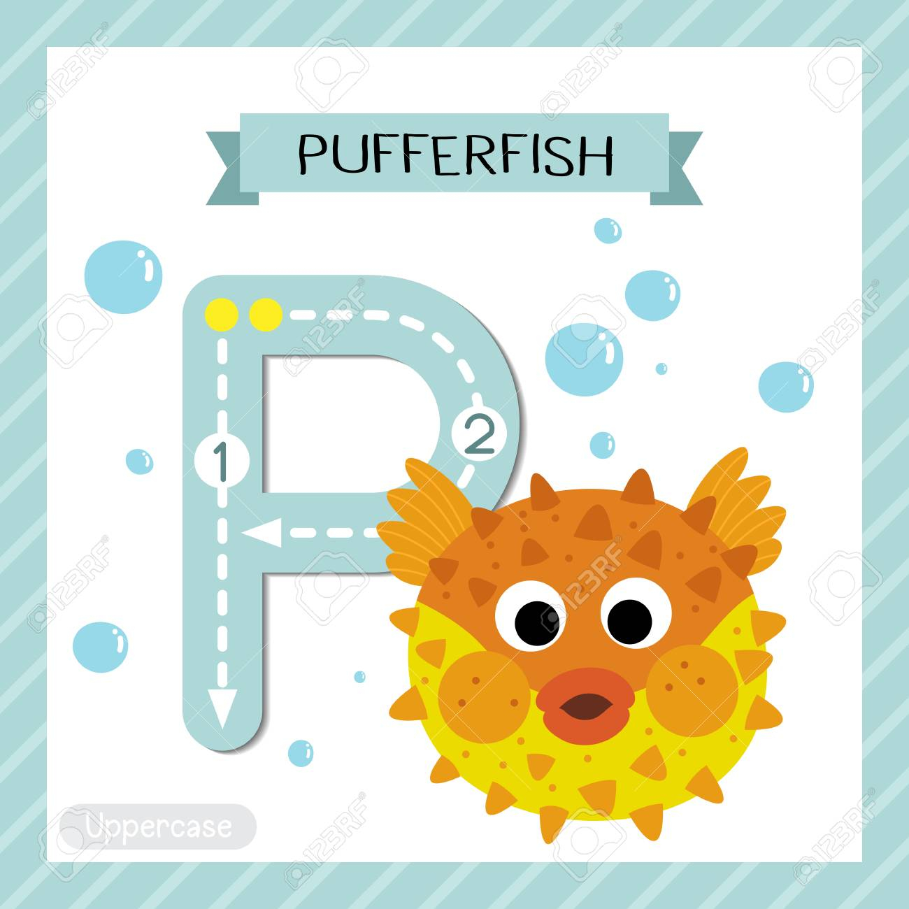 Letter P Uppercase Cute Children Colorful Zoo And Animals Abc..