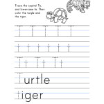Letter T Worksheets Preschool Worksheet Colors Theme