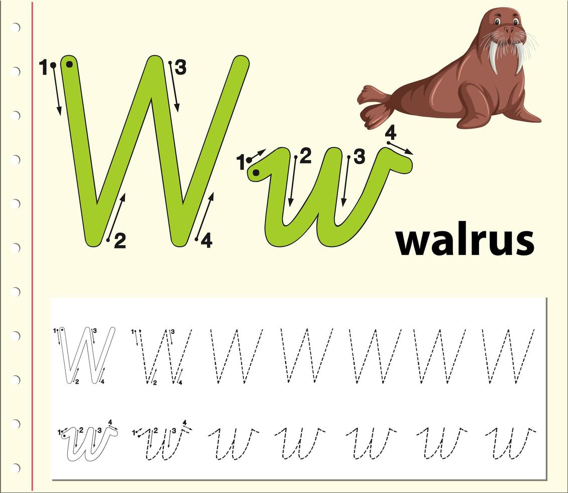 Letter W Tracing Alphabet Worksheets - Download Free Vectors