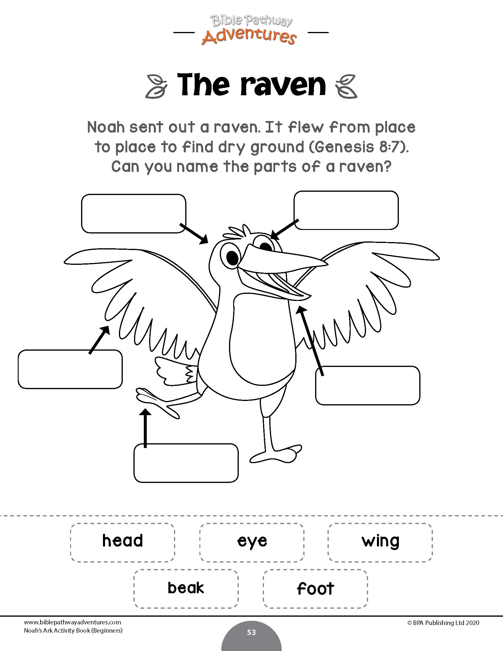 Noah's Ark Activity Book For Beginners – Bible Pathway