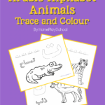 Opening Of Tpt Store And Launch Of Arabic Alphabet – Animals
