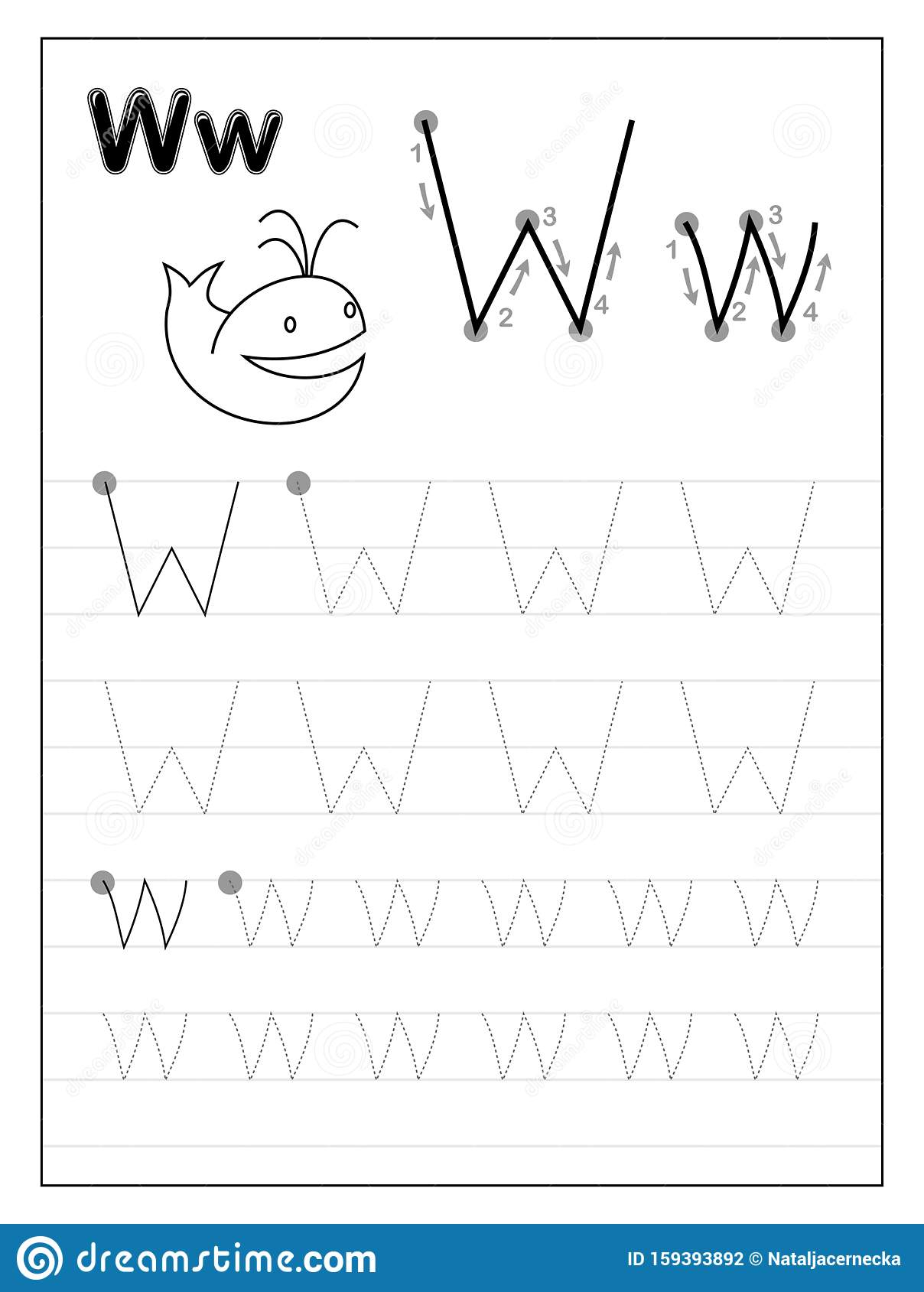Tracing Alphabet Letter W. Black And White Educational Pages
