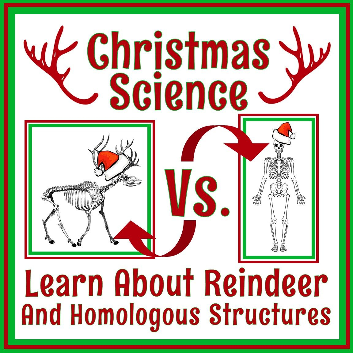 Middle School Holiday Science Worksheet | Christmas Science