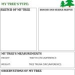 My Christmas Tree Stem Activity {Free Printable} | Stem