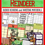 The Wild Christmas Reindeer Book Companion In Digital And