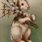 Easter Bunny Wikipedia