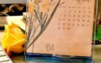 Free Printable Calendar 2019 CD Case Calendar The