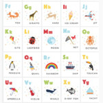 Alphabet Flashcards Printable Alphabet Letters Alphabet