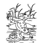 Animals Birds And Insects Coloring Pages Part 6