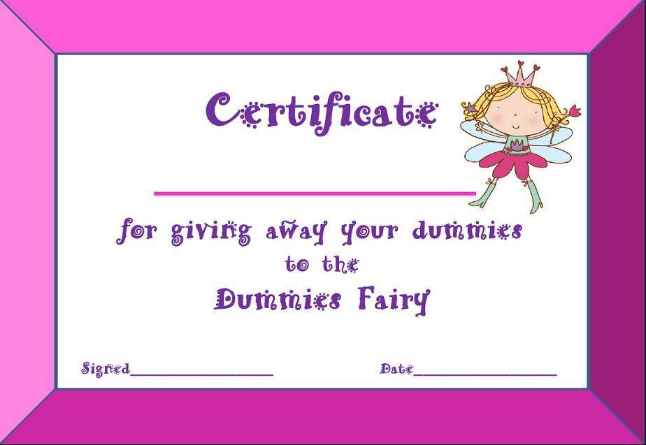 Dummies Fairy First time Mummy Diary