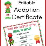 Elf On The Shelf Adoption Certificate