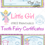 Free Printable Tooth Fairy Certificates Tooth Fairy