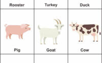Preschool Farm Animal Flash Cards In 2020 Animal
