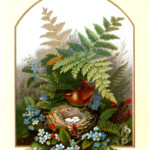 Vintage Bird With Floral Nest Image The Graphics Fairy