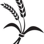 Wheat Stencil Stencils Printables Church Banners